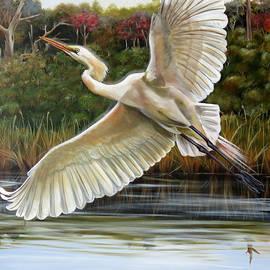 Rhythmical Flight by Phyllis Beiser