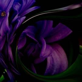Nancy Pauling - Rich Hyacinth Fractal