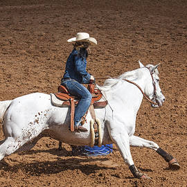 Sally Weigand - Ride Em Cowgirl