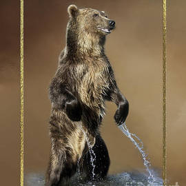 Wildlife Fine Art - Rising Bear