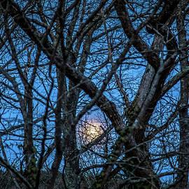 Lisa Lemmons-Powers - Rising Moon