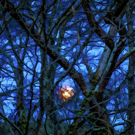 Lisa Lemmons-Powers - Rising Moon Through the Trees
