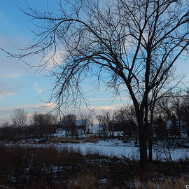 Frozen River and Farm by Curtis Tilleraas