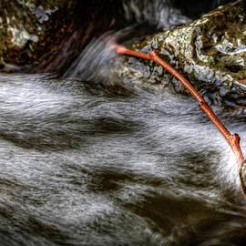 Ray Congrove - River Motion