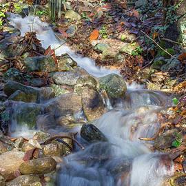 Luca Rossatti - River of water
