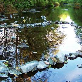 Julie Rauscher - River Reflections
