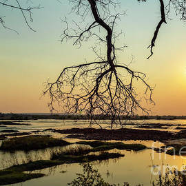 Kay Brewer - River Sunset in Botswana