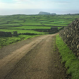 Road Through The Pastrues Of Terceira  by Kelly Hazel