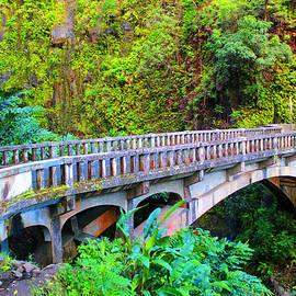 Michael Rucker - Road to Hana Bridge