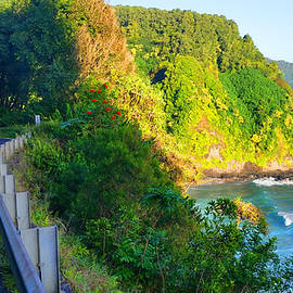 Michael Rucker - Road to Hana - Hawaii