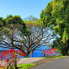 Michael Rucker - Road to Hana - Maui