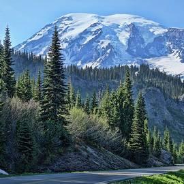 Dan Sproul - Road To Rainier