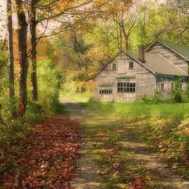 Reese Lewis - Roadside Barn