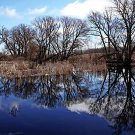 Debbie Oppermann - Roadside Pond I