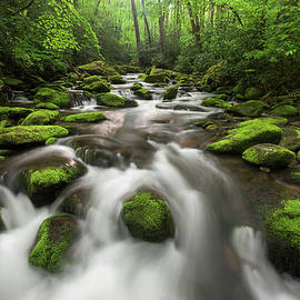 Mark VanDyke - Roaring Fork Great Smoky Mountains National Park Tennessee