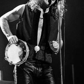 Robert Plant-0062 by Timothy Bischoff