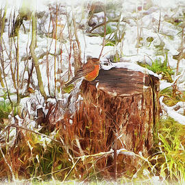 Lonely Robin And Early Snow by Reese Lewis