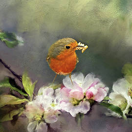 Robin Gathering Food by Robert Murray