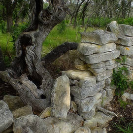 Bill Morgenstern - Rock Fence