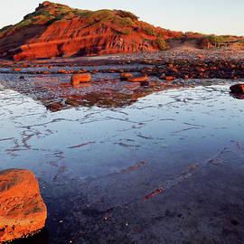 Rock Shelf at Long Reef 1 by Nicholas Blackwell