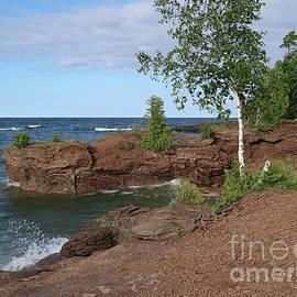 Ann Horn - Rockbound Shore