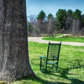 Deborah Brown - Rocking Chair Under a Tree