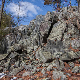 Rocks Along The Skyline Trail by Brian MacLean