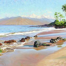 Rocks on Polo Beach - Steve Simon