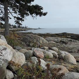 Rocky Coastline of Maine by Bill Tomsa