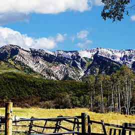 Rocky Mountain Eagle Soars by Dale E Jackson