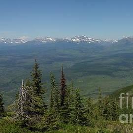Rocky  Mountain Panorama by Maili Page