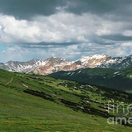 Rocky Mountain View by Sharon Seaward