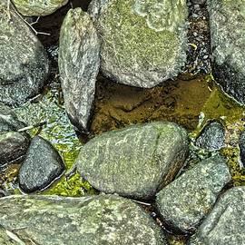 Rocky Nature by Sonali Gangane