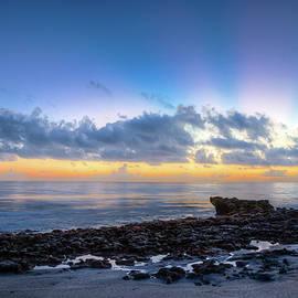 Rocky Reef at Low Tide by Debra and Dave Vanderlaan