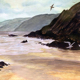 Rocky Shore by Brian Wallace