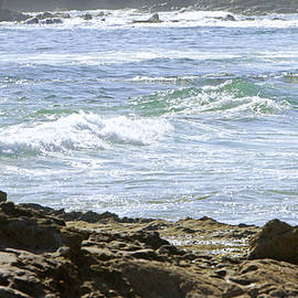 Rocky Shores by Shoal Hollingsworth
