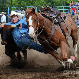 Rodeo Life 2 by Bob Christopher