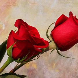 Judy Vincent - Romance