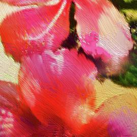 Romantic Hibiscus Flowers