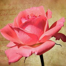 Michelle Tinger - Romantic Rose