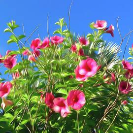 Romantic Skies Cherries Jubilee Allamanda by Aimee L Maher ALM GALLERY