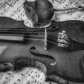 Romantic Violin And Rose In Black And White - Garry Gay