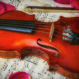 Romantic Violin by Garry Gay