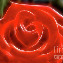 Gary Gingrich Galleries - Rose-5845-Fractal
