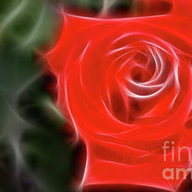 Gary Gingrich Galleries - Rose-5890-Fractal