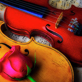 Rose And Two Violins - Garry Gay