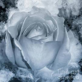 Mona Stut - Rose Black White Monotone