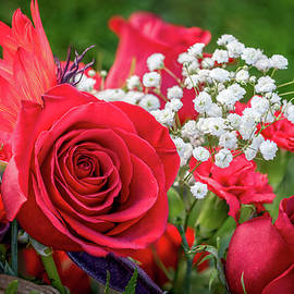 Stephen Rowles - Rose Bouquet