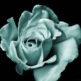 Jennie Marie Schell - Rose Flower in Teal Green