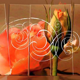 Geraldine Scull - Rose Garden